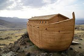 Noé 20